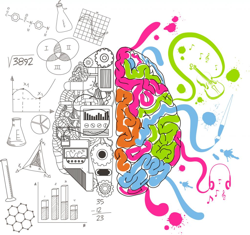 Cérebro dividido mostrando o lado esquerdo como o lado acadêmico e o direito como lado artístico. O lado acadêmico é representado por diversas engrenagens e gráficos. O lado artístico é representado por cores variadas, instrumentos musicais e pinceis.